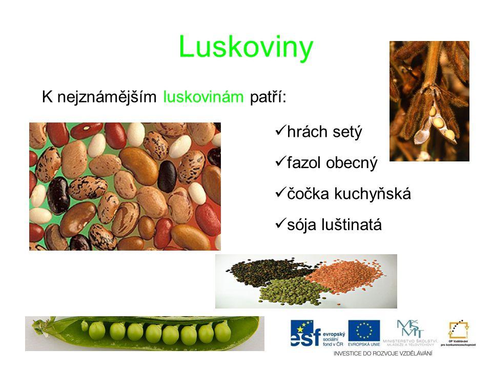 Luskoviny K nejznámějším luskovinám patří: hrách setý fazol obecný