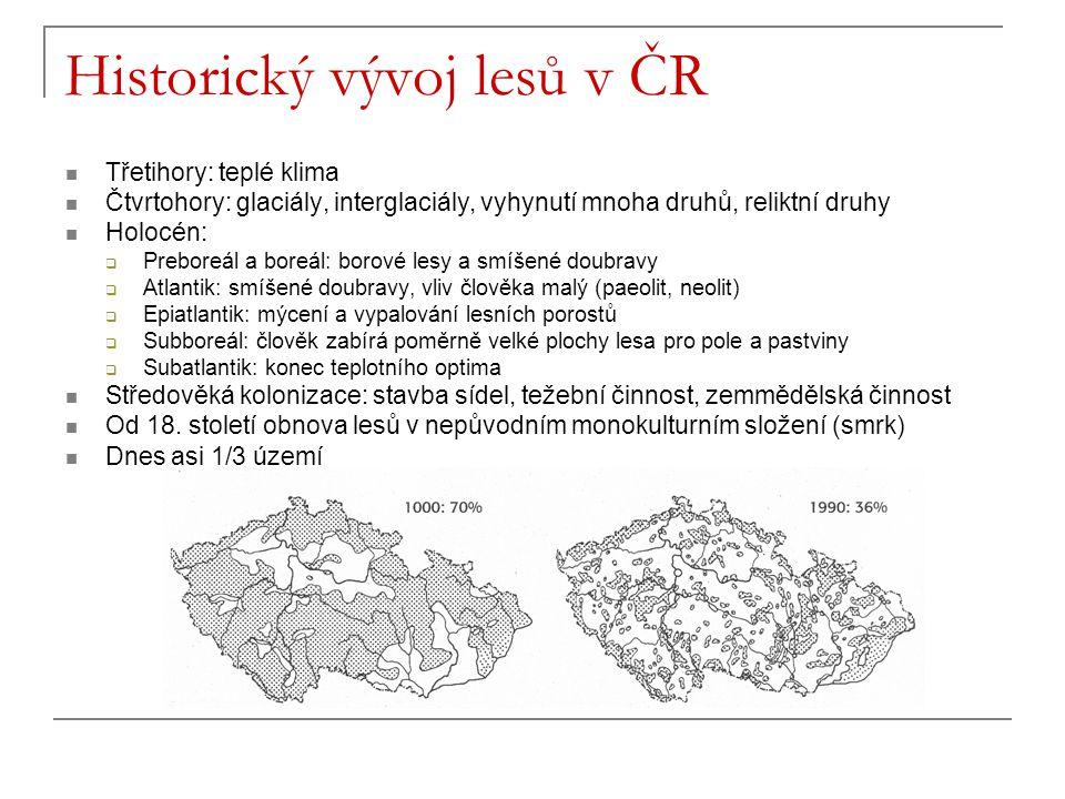 Historický vývoj lesů v ČR
