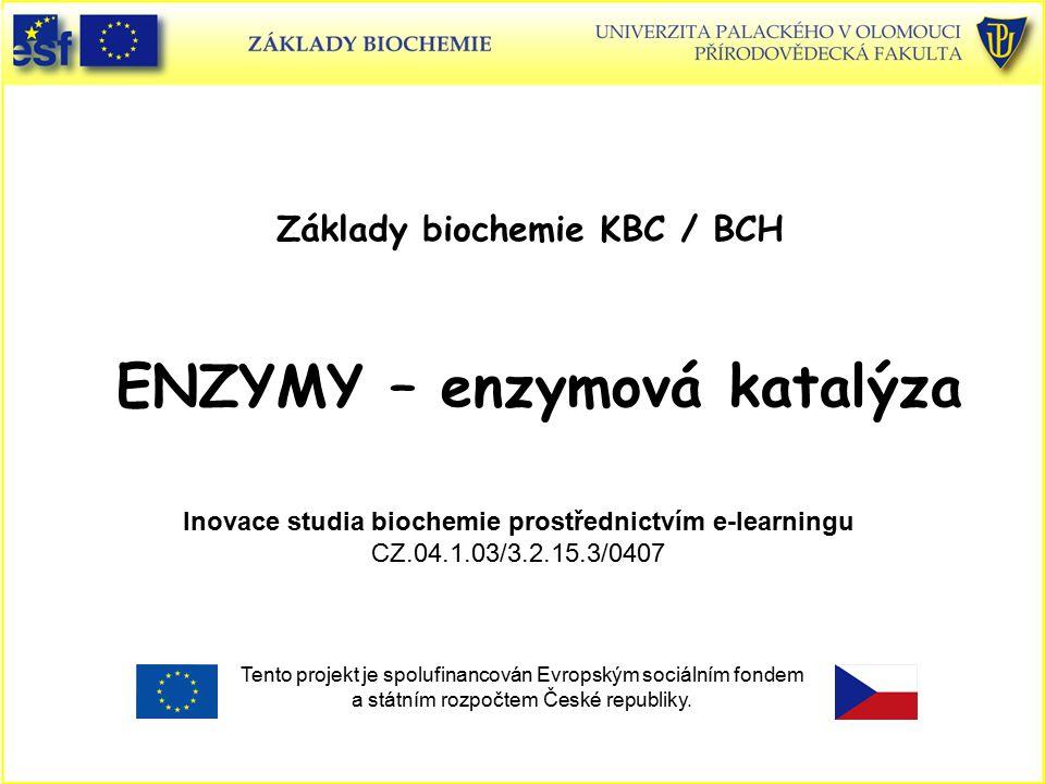 ENZYMY – enzymová katalýza