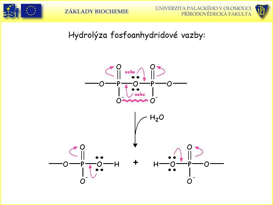Hydrolýza fosfoanhydridové vazby: