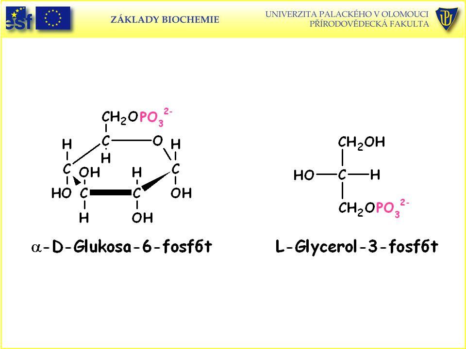 Glukosa-6-fosfát L-Glycerol-3-fosfát
