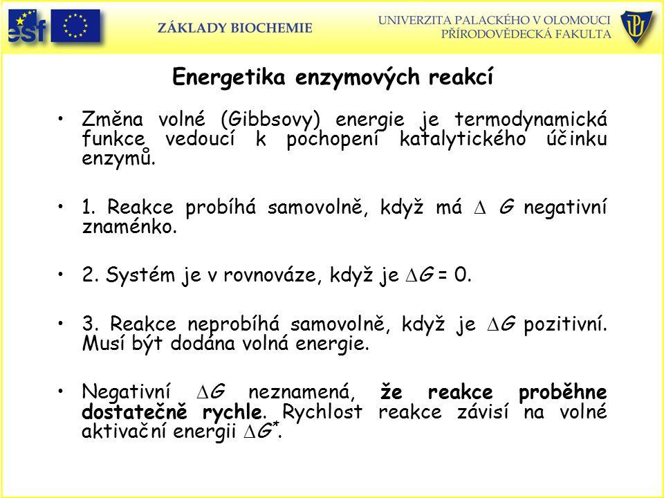 Energetika enzymových reakcí