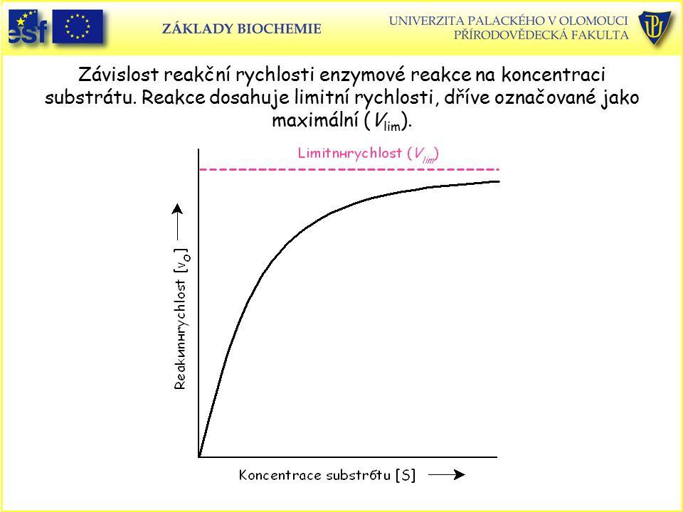 Závislost reakční rychlosti enzymové reakce na koncentraci substrátu