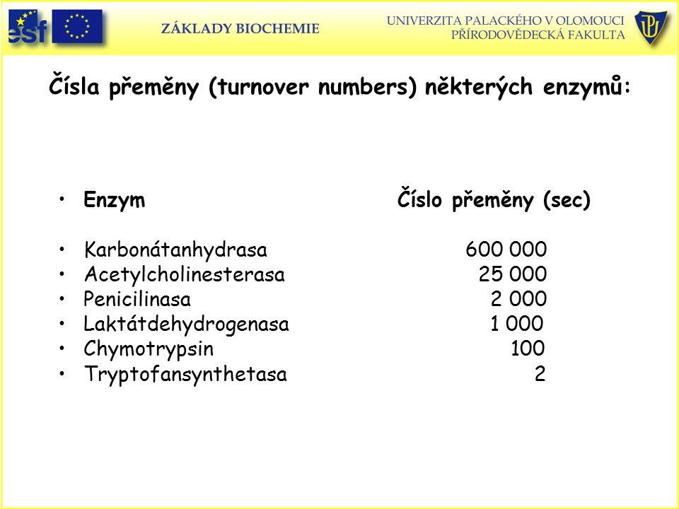 Čísla přeměny (turnover numbers) některých enzymů: