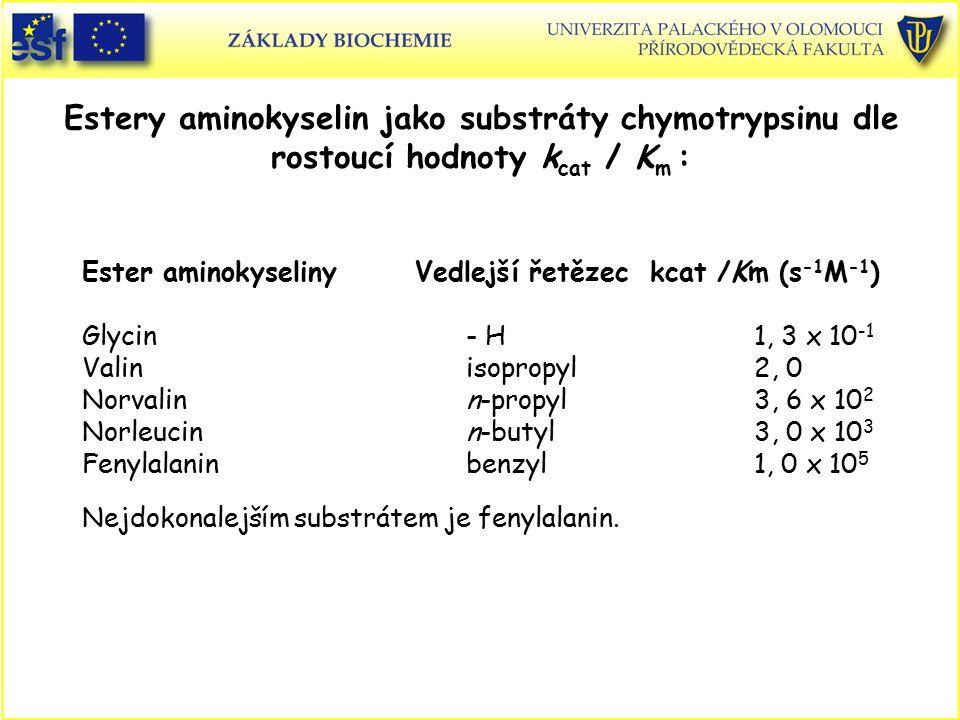 Estery aminokyselin jako substráty chymotrypsinu dle rostoucí hodnoty kcat / Km :