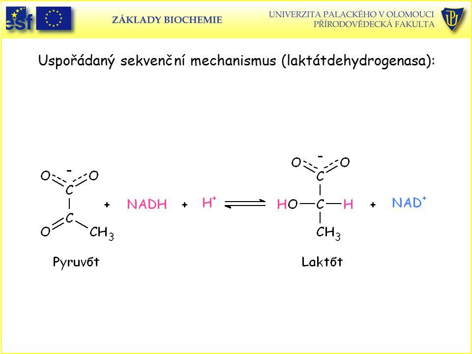 Uspořádaný sekvenční mechanismus (laktátdehydrogenasa):