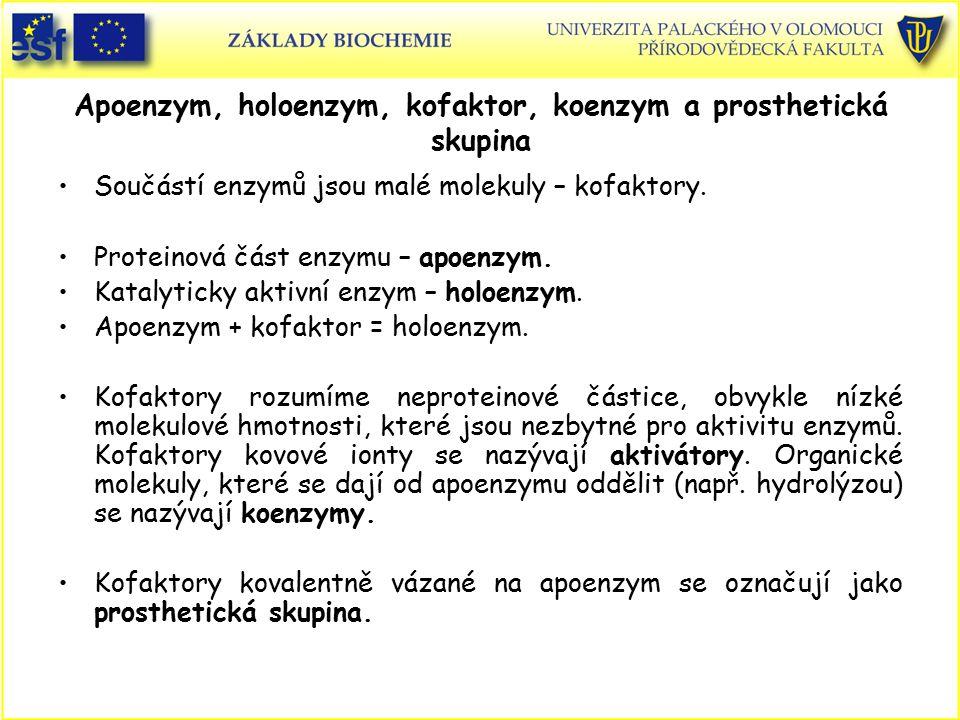 Apoenzym, holoenzym, kofaktor, koenzym a prosthetická skupina