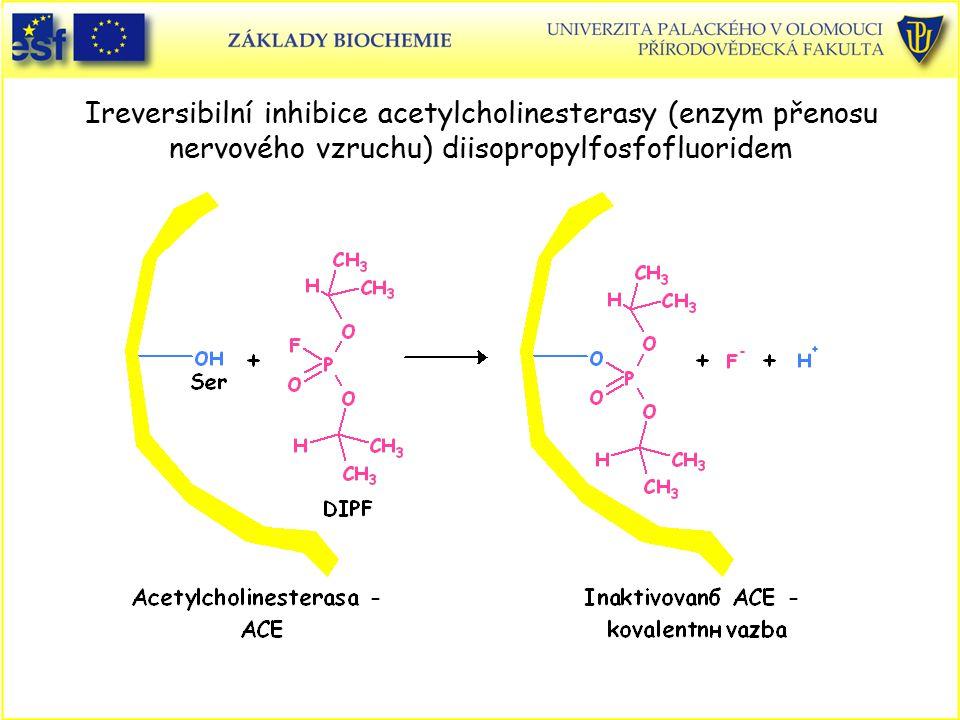 Ireversibilní inhibice acetylcholinesterasy (enzym přenosu nervového vzruchu) diisopropylfosfofluoridem