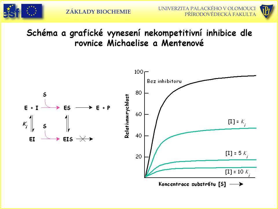 Schéma a grafické vynesení nekompetitivní inhibice dle rovnice Michaelise a Mentenové