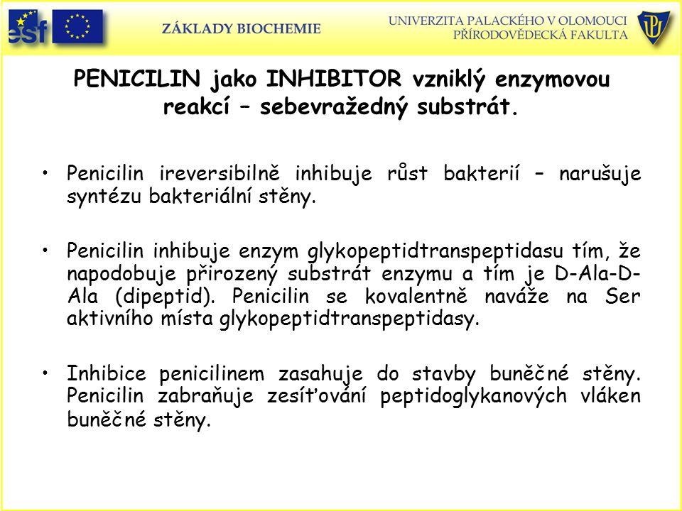 PENICILIN jako INHIBITOR vzniklý enzymovou reakcí – sebevražedný substrát.