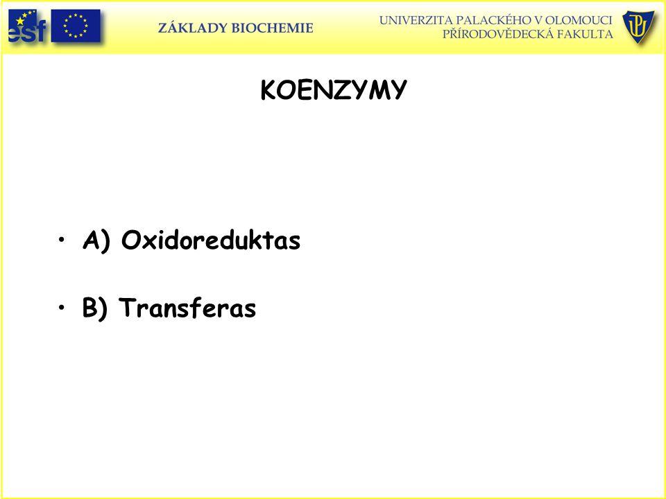 KOENZYMY A) Oxidoreduktas B) Transferas Koenzymy