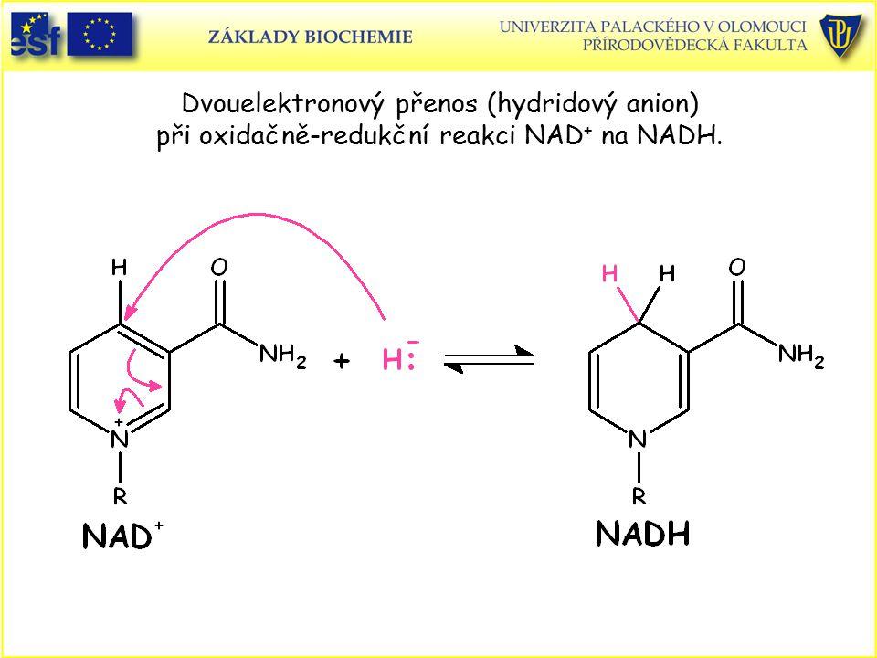 Dvouelektronový přenos (hydridový anion) při oxidačně-redukční reakci NAD+ na NADH.