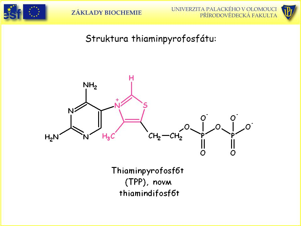 Struktura thiaminpyrofosfátu:
