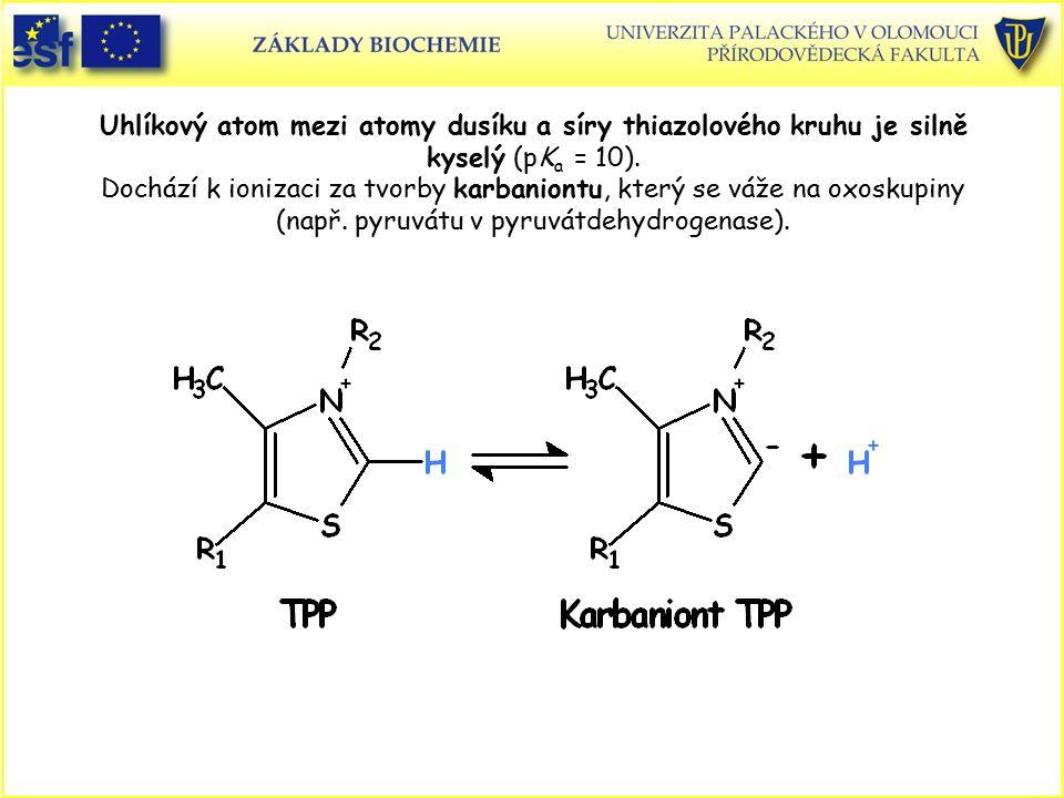 Uhlíkový atom mezi atomy dusíku a síry thiazolového kruhu je silně kyselý (pKa = 10). Dochází k ionizaci za tvorby karbaniontu, který se váže na oxoskupiny (např. pyruvátu v pyruvátdehydrogenase).