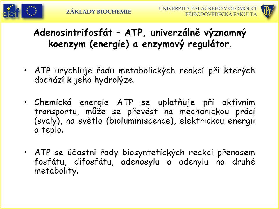 Adenosintrifosfát – ATP, univerzálně významný koenzym (energie) a enzymový regulátor.