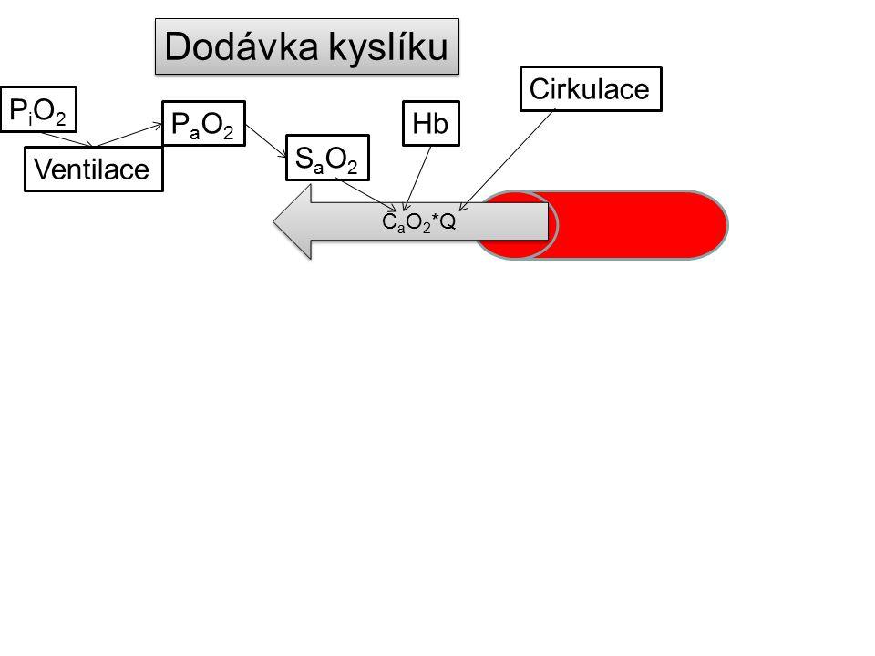Dodávka kyslíku Cirkulace PiO2 PaO2 Hb SaO2 Ventilace CaO2*Q