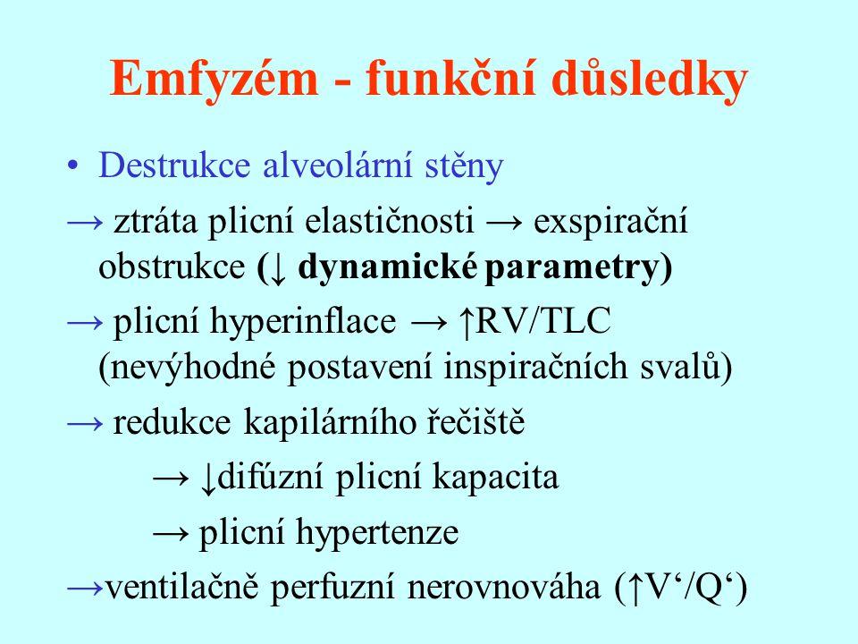 Emfyzém - funkční důsledky