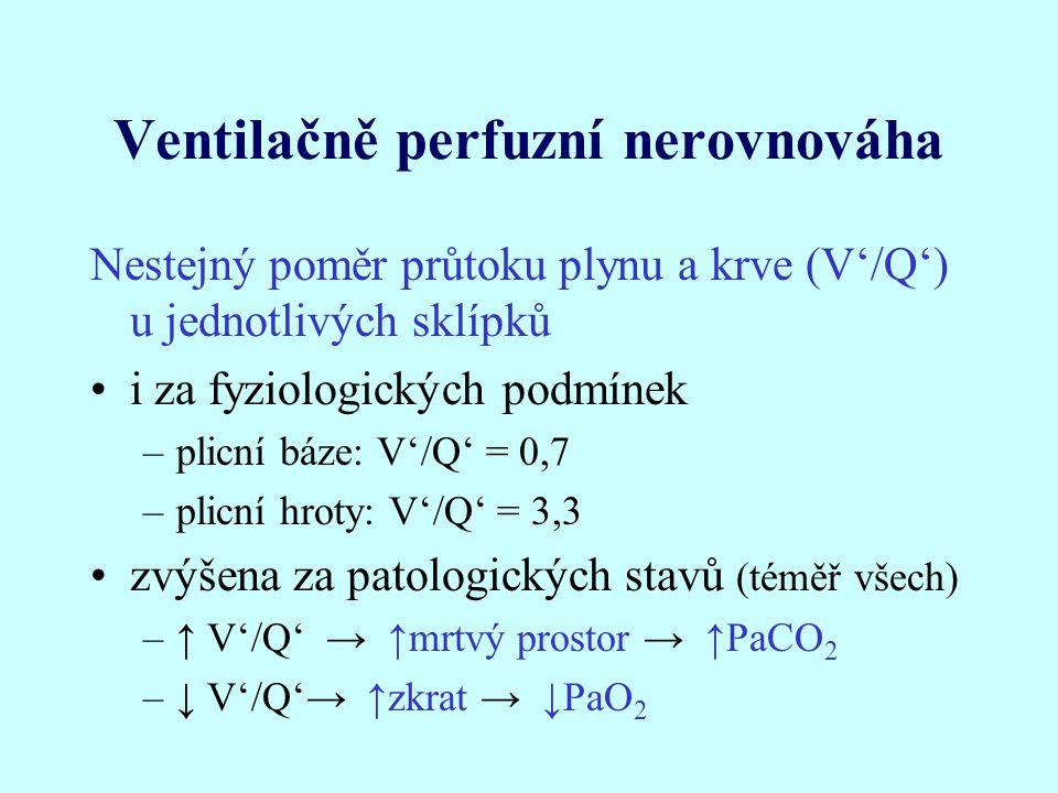 Ventilačně perfuzní nerovnováha