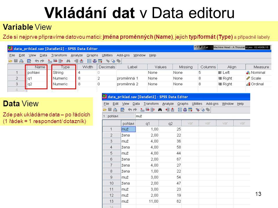 Vkládání dat v Data editoru