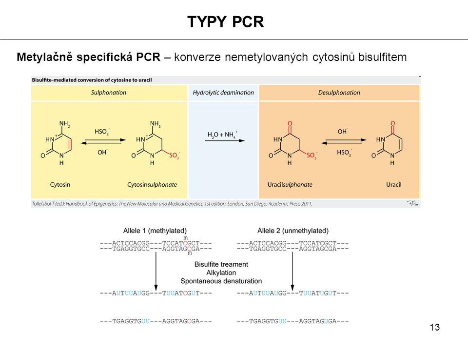TYPY PCR Metylačně specifická PCR – konverze nemetylovaných cytosinů bisulfitem