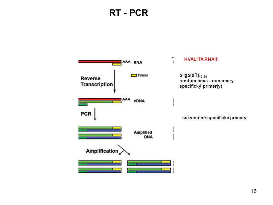 RT - PCR KVALITA RNA!!! oligo(dT)12-20 random hexa - nonamery