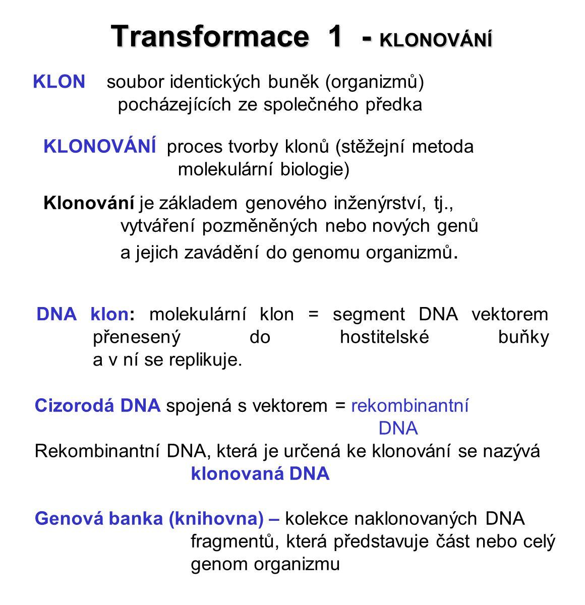 Transformace 1 - KLONOVÁNÍ
