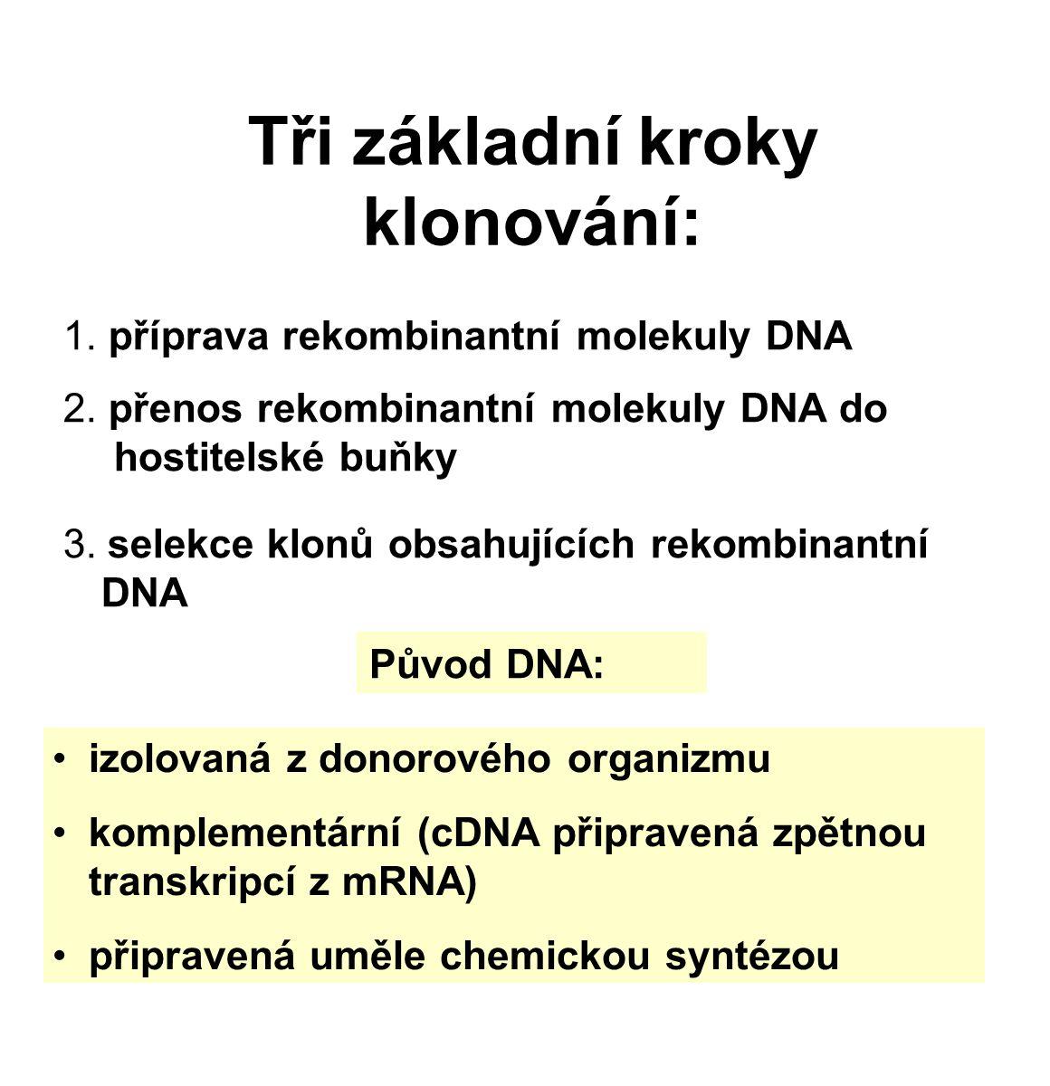 Tři základní kroky klonování: