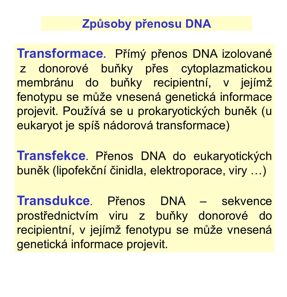 Způsoby přenosu DNA