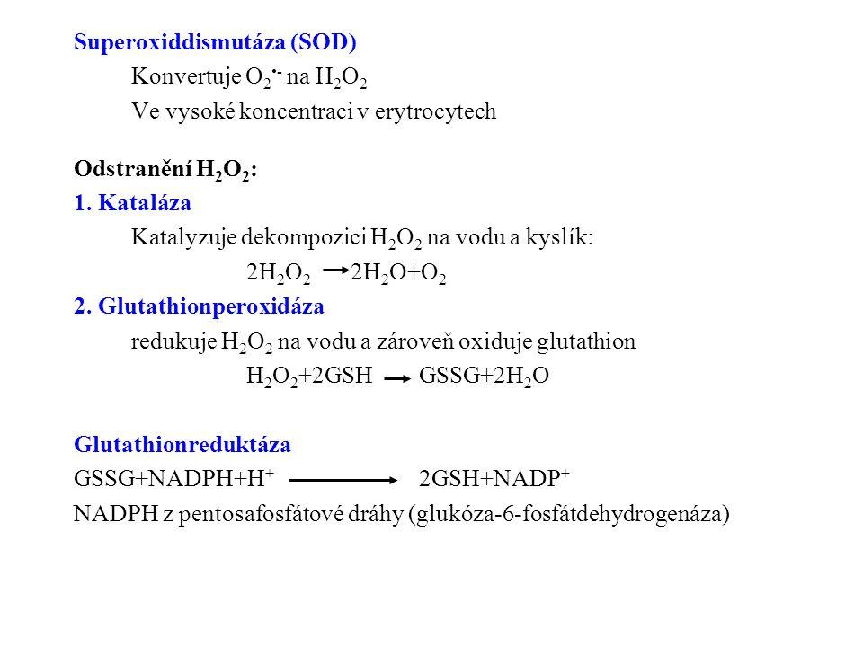 Superoxiddismutáza (SOD)