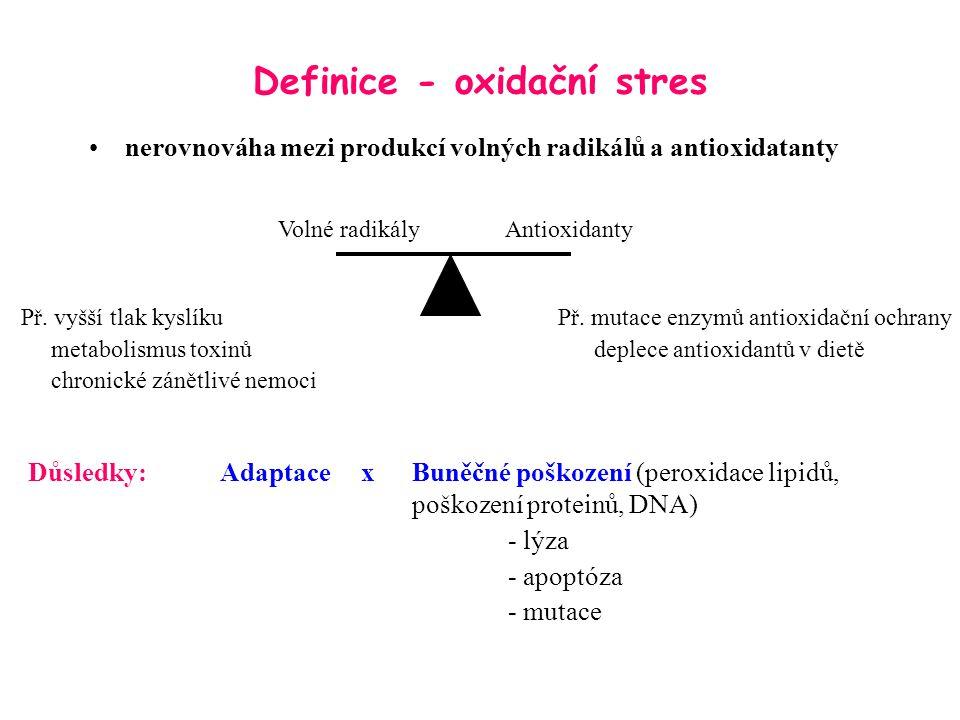 Definice - oxidační stres