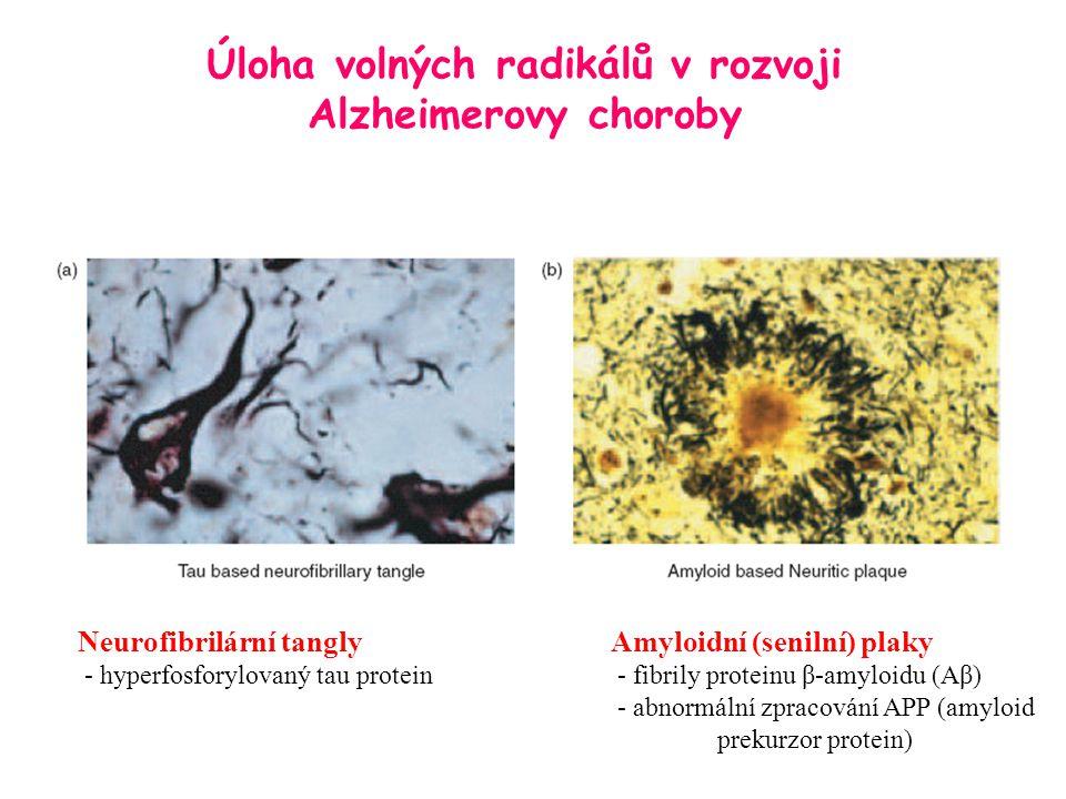 Úloha volných radikálů v rozvoji Alzheimerovy choroby