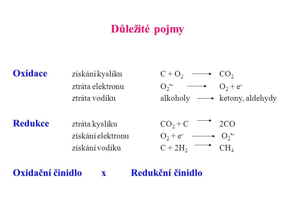Důležité pojmy Oxidace získání kyslíku C + O2 CO2