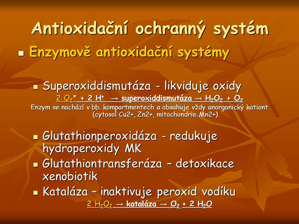 Antioxidační ochranný systém