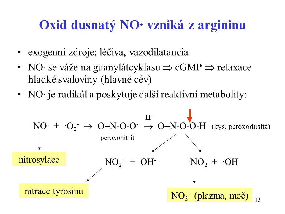 Oxid dusnatý NO· vzniká z argininu