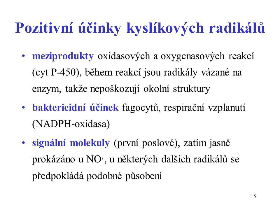 Pozitivní účinky kyslíkových radikálů
