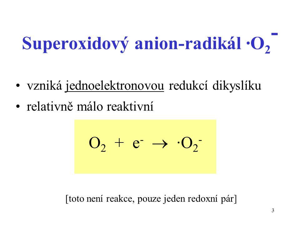 Superoxidový anion-radikál ·O2-