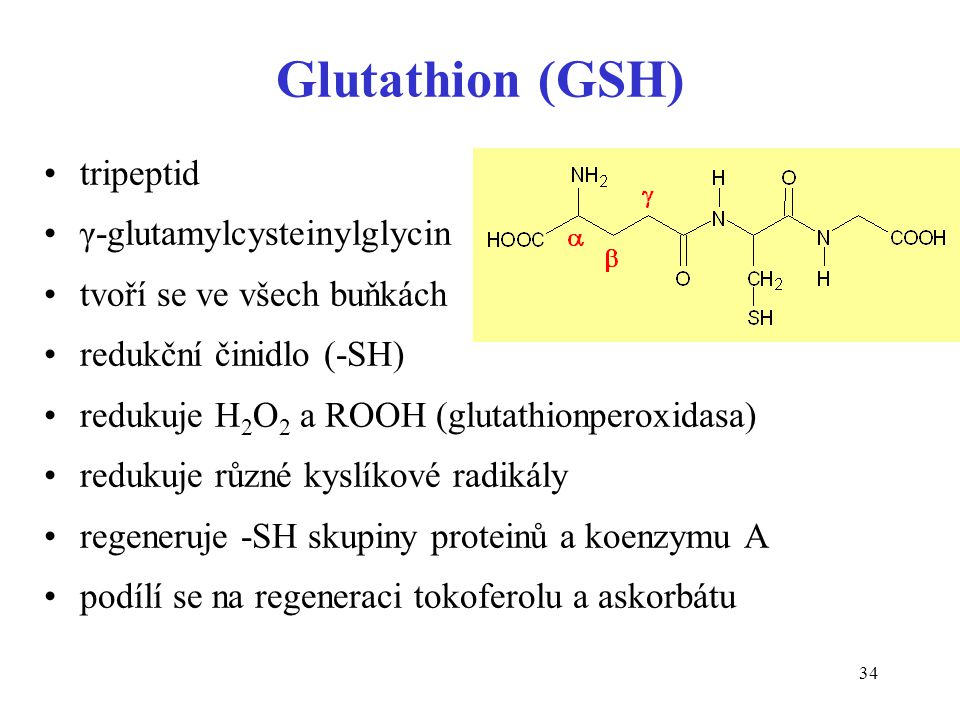 Glutathion (GSH) tripeptid γ-glutamylcysteinylglycin