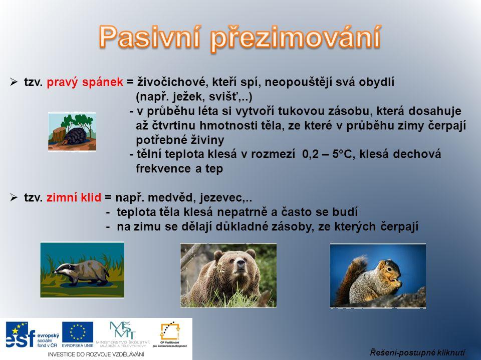 Pasivní přezimování tzv. pravý spánek = živočichové, kteří spí, neopouštějí svá obydlí. (např. ježek, svišť,..)
