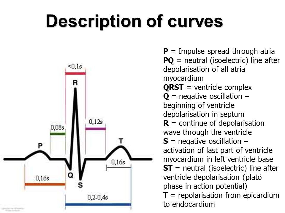 Description of curves P = Impulse spread through atria