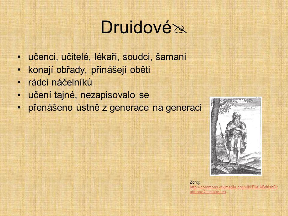 Druidové učenci, učitelé, lékaři, soudci, šamani