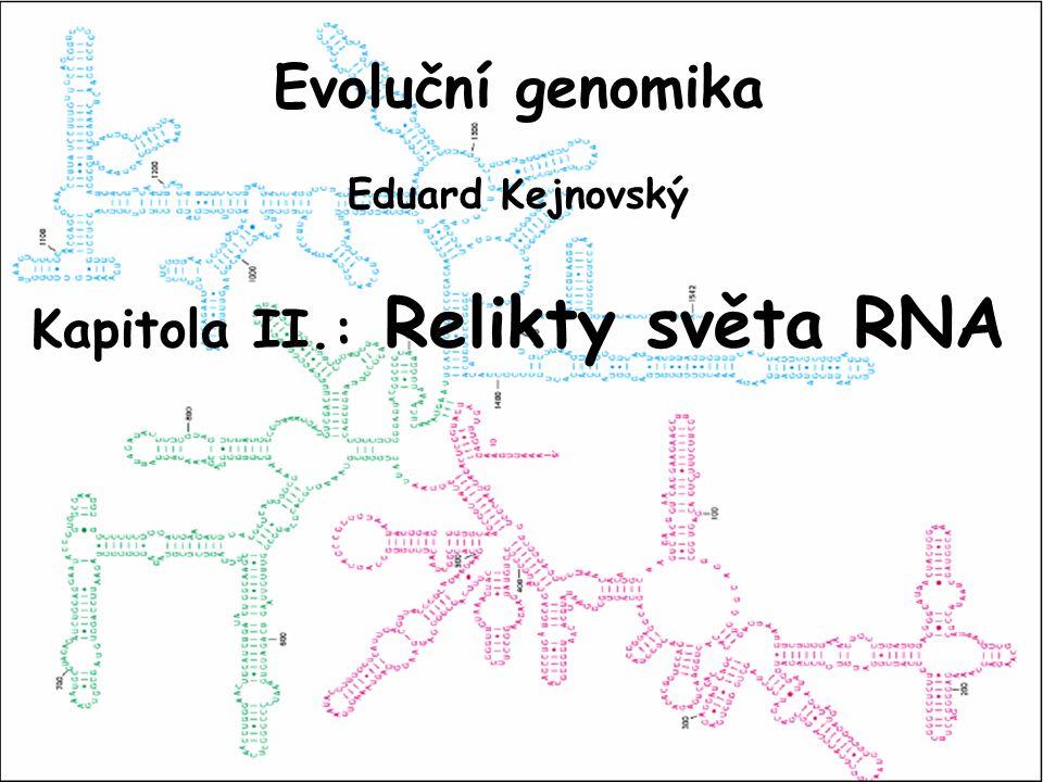 Kapitola II.: Relikty světa RNA