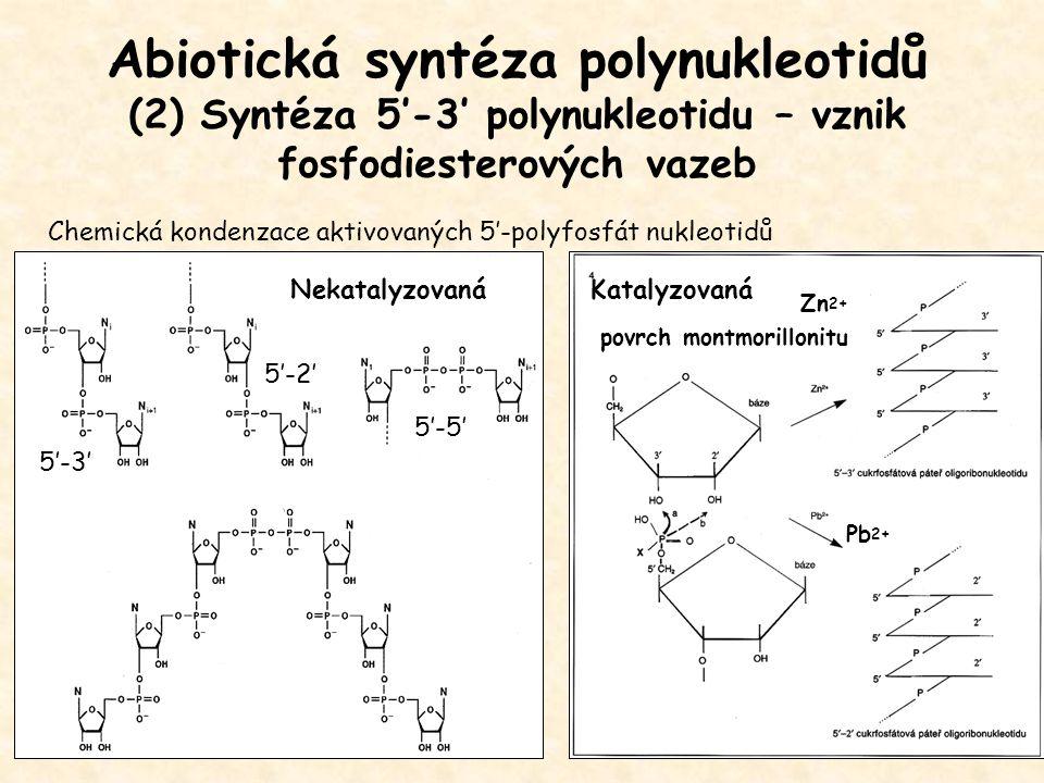 Abiotická syntéza polynukleotidů