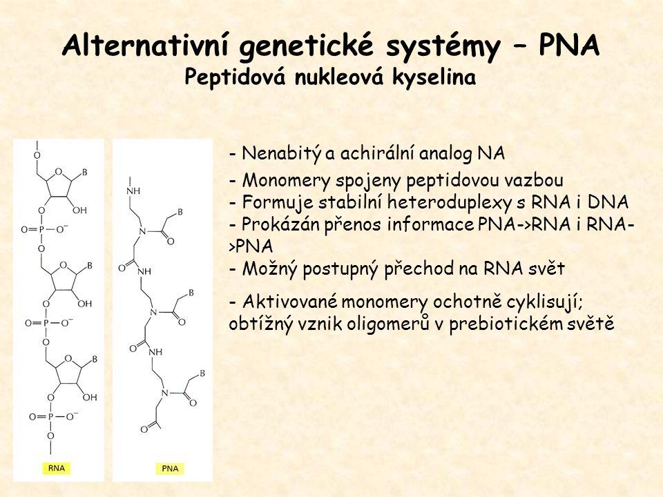 Alternativní genetické systémy – PNA Peptidová nukleová kyselina
