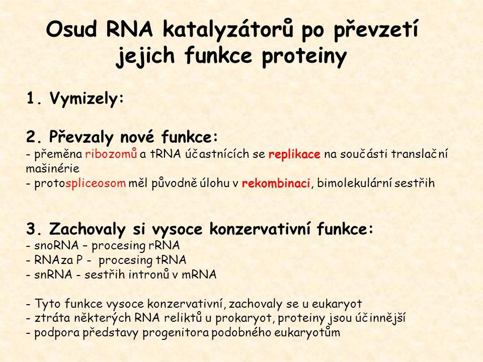 Osud RNA katalyzátorů po převzetí jejich funkce proteiny