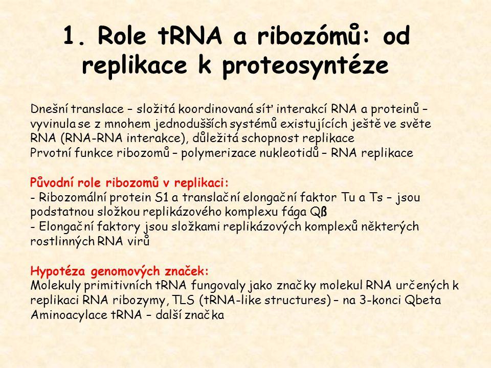 1. Role tRNA a ribozómů: od replikace k proteosyntéze