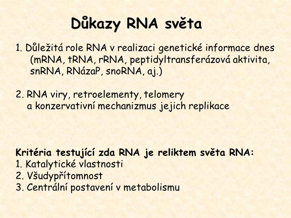 Důkazy RNA světa