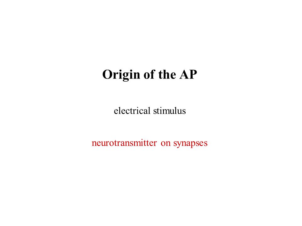 Origin of the AP electrical stimulus neurotransmitter on synapses