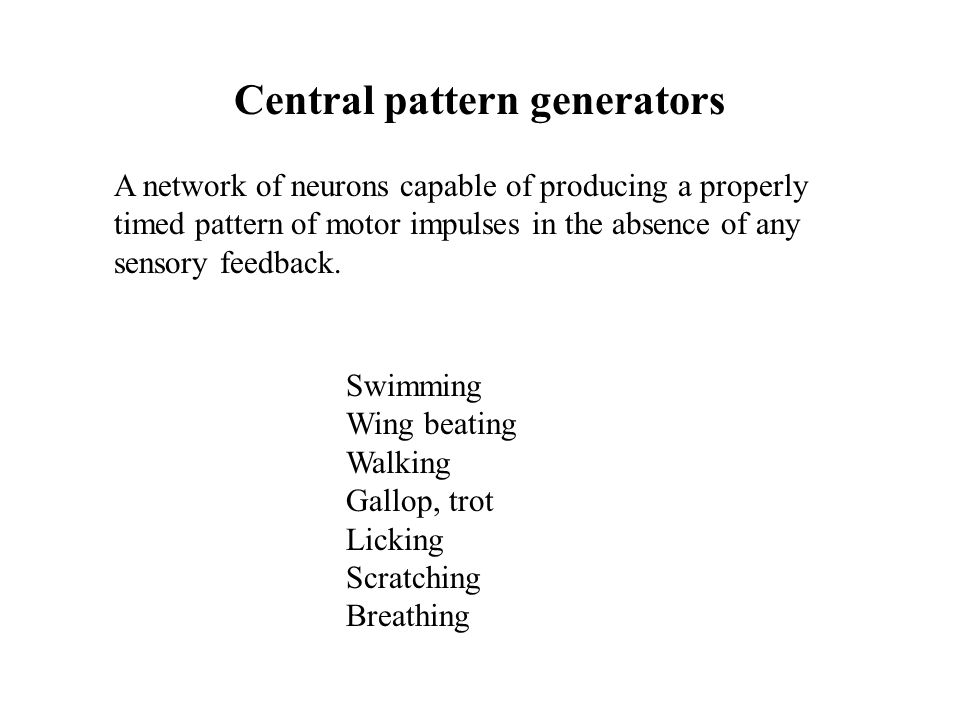Central pattern generators