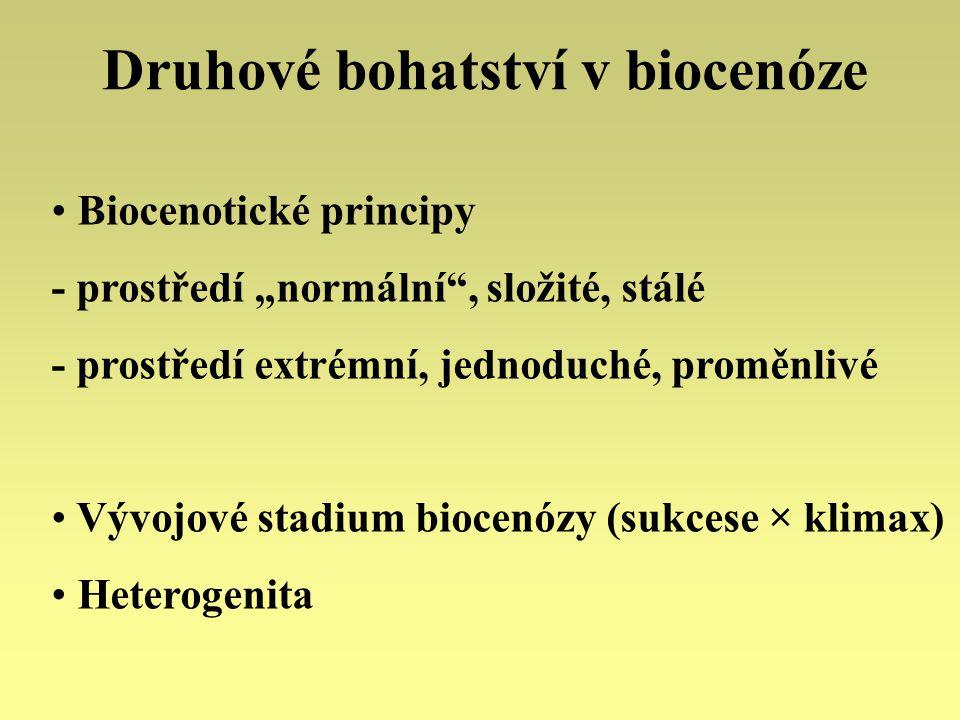 Druhové bohatství v biocenóze