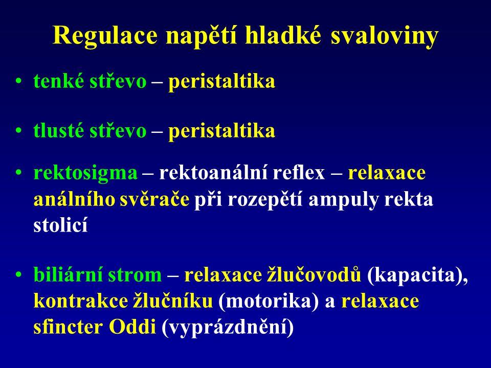 Regulace napětí hladké svaloviny